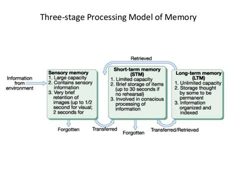Three Stage Model