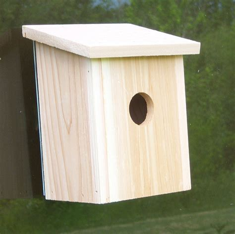 bird houses with viewing window nest view cedar window bird house