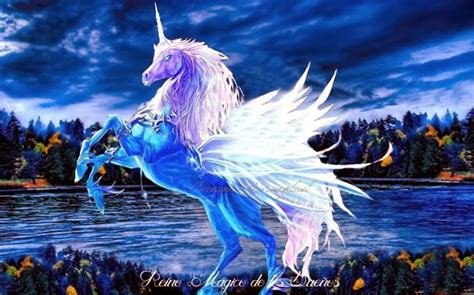 imagenes de unicornios reales con alas reino magico de los sue 209 os unicornios