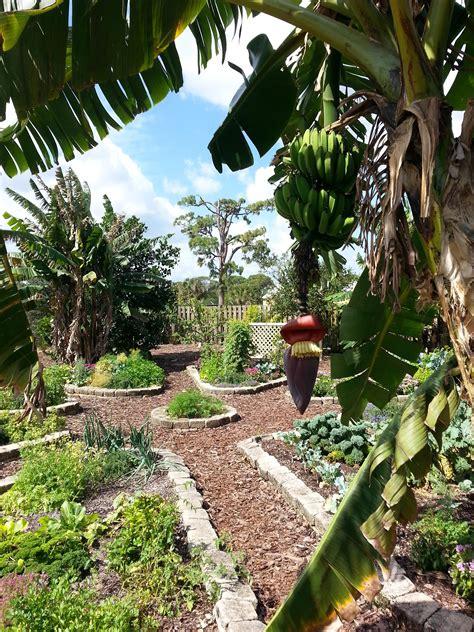 west palm botanical garden mounts botanical garden south florida finds