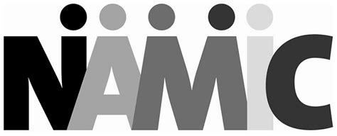 New York Mba Leadership Development Program by Namic Announces Roster For Class Xvi Of Its Executive