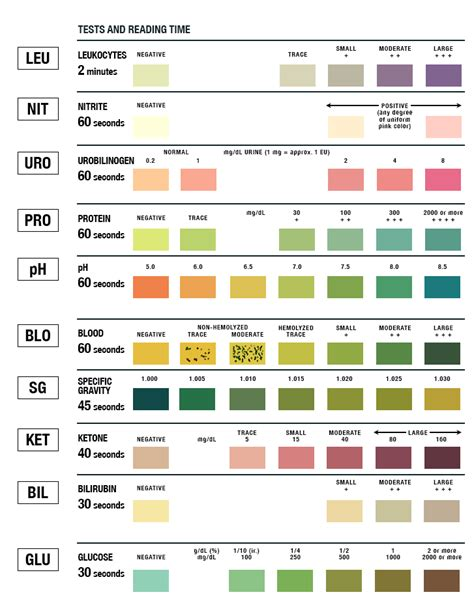 Can You Pass A Lab Urinalysis With A Detox Drink by Urinalysis Test Color Chart Learn Parallax