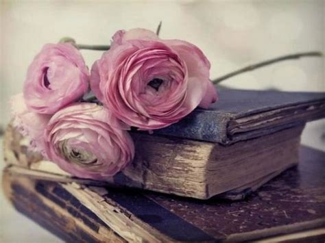 the roses books livre ancien