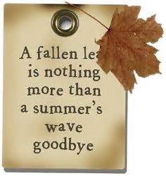 Quote of the day on pinterest monday sayings summer quotes and dr
