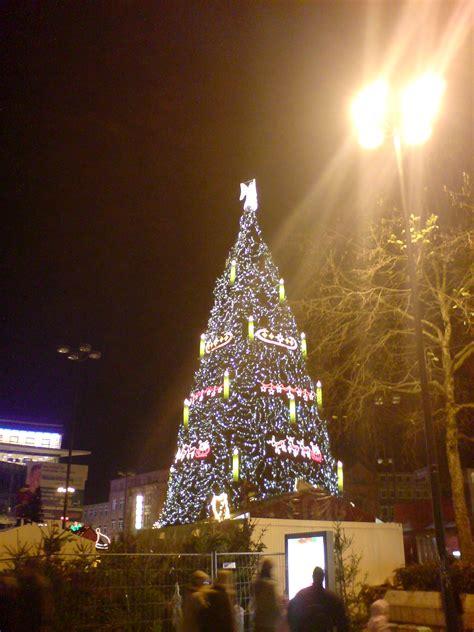 ratgeber den weihnachtsbaum richtig sichern