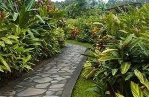 camminamento giardino camminamenti giardino giardino fai da te