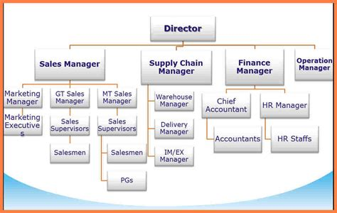 11 organizational chart of the company company letterhead