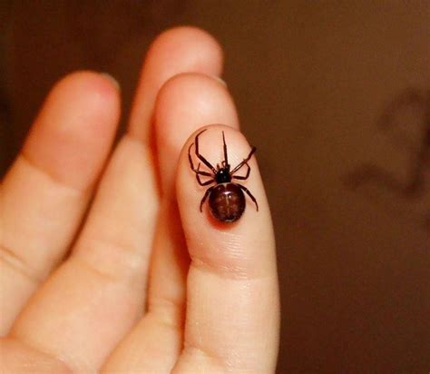 black widow spider tattoo black widow spider tattoos with baby tattooic