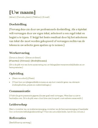 Functioneel Cv Sjabloon cv functioneel ontwerp office templates