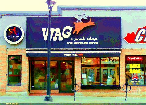 the glebe storefront paintings wag pet and bicycle shop