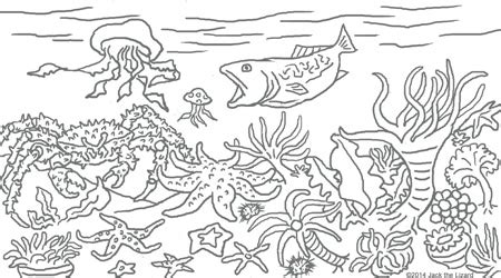 fish habitat coloring pages image gallery ocean habitat coloring pages