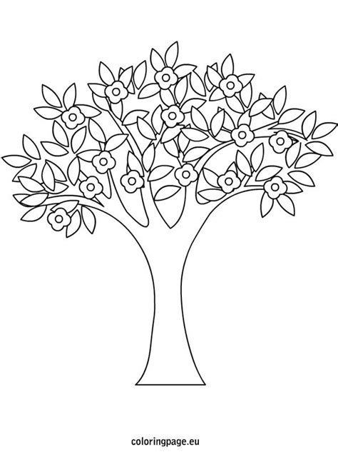spring tree coloring page spring pinterest trees