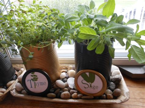 Window Sill Herbs Designs Kitchen Windowsill Herb Garden Happily Occupied Homebodies