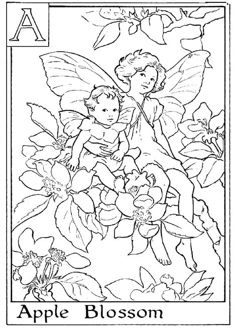 fairies in bloom a flower coloring book books coloring pages for adults coloring home