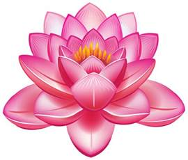 Lotus Flower Of Lotus Flower Png Clipart Best Web Clipart