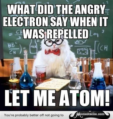 Chemistry Jokes Meme - 25 best ideas about chemistry cat on pinterest