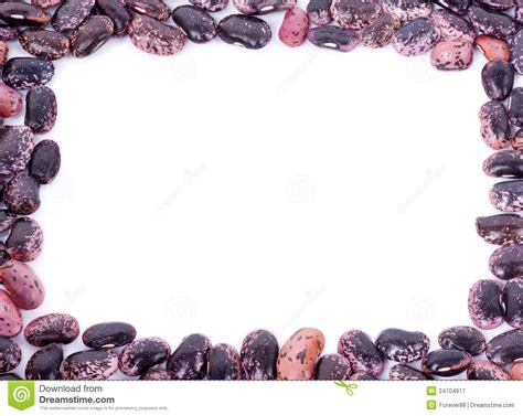kidney color color kidney beans isolated royalty free stock photography