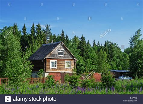 by the nearby forest and the bordeaux home shirt for the stadium village landscape house near forest stock photo royalty