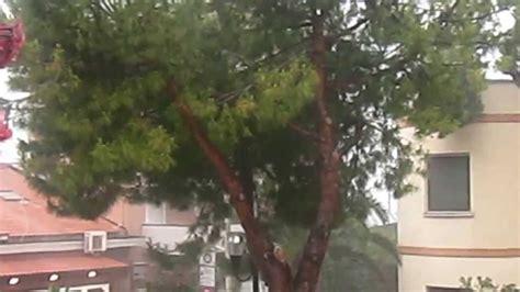 mm di pioggia alcuni mm di pioggia youtube