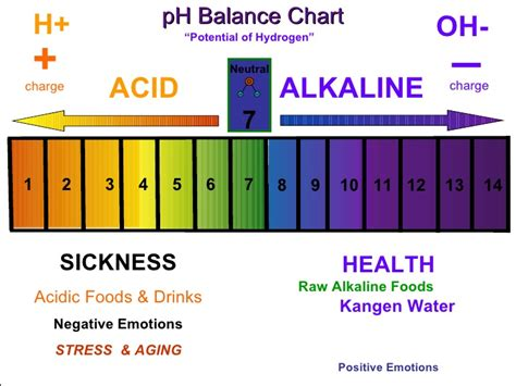 proper ph balance is critical for good health why you should switch to alkaline diet healthmania