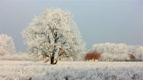 wann ist winter wann sind meteorologischer und kalendarischer winteranfang