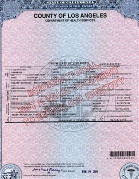 Los Angeles County Birth Records Los Angeles County Birth Certificate Get Vital Record Birth Certificate