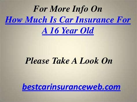 car insurance    year