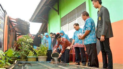 Bibit Lele Banjarnegara sma negeri 1 purwanegara launching kolam lele radar banyumas