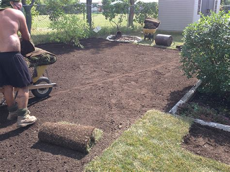 regrading to improve drainage from back yard the lawn salon