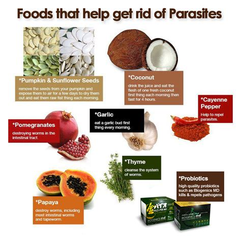 foods that get rid of parasites