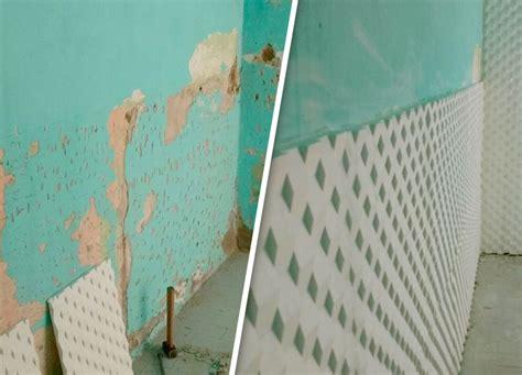 productos para la humedad en paredes interiores como limpiar la humedad de la pared biodry asegura que