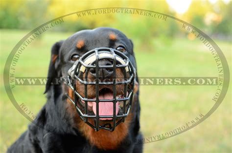 rottweiler cage size rottweiler wire muzzle for winter with rubber cover m10 1073 wire muzzle 43