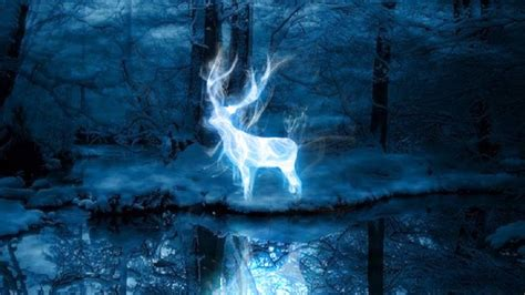 expecto patronum test the wait is discover your patronus with pottermore s