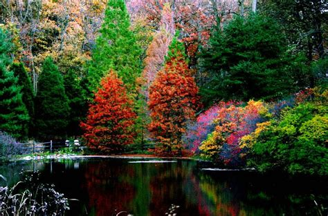 of pennsylvania colors fall color a photo from pennsylvania northeast trekearth
