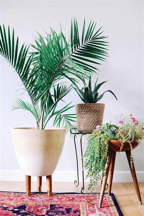 flower pots  legs award winning contemporary