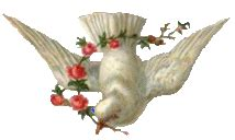 Balon Foil Burung Merpati Putih cliparts colombes