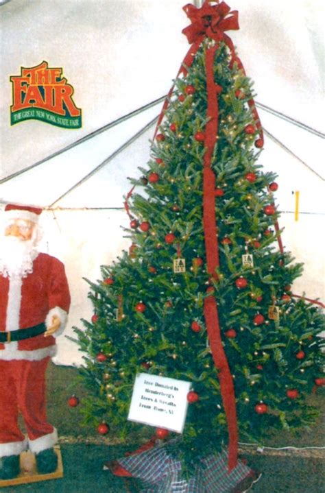 farm info hours henderberg s christmas trees and