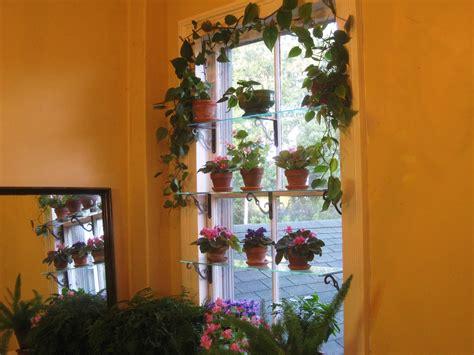 Plant Window Shelf by Steps To A Window Garden