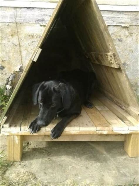 build dog house from pallets bring the luck to home 16 pallet dog house pallet furniture diy