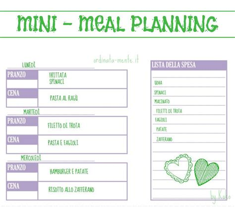 sle meal planning 10 best organizziamoci images on