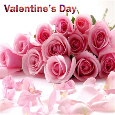 pink roses valentines day pink roses on day images 2017