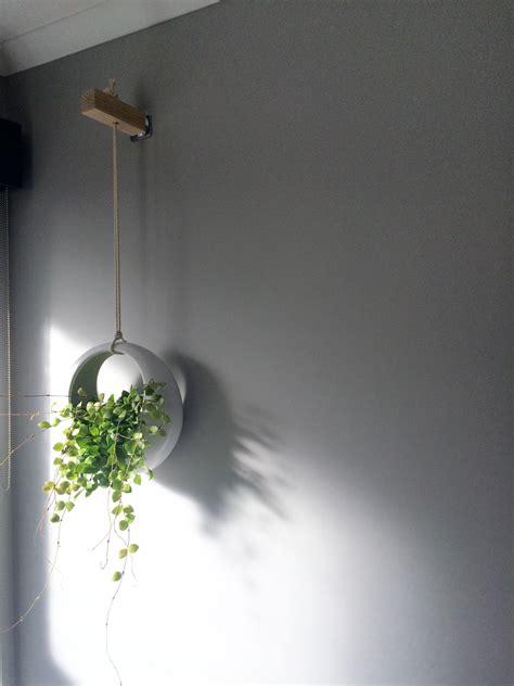 hanging pot  bathroom kmart bathroom plants decor