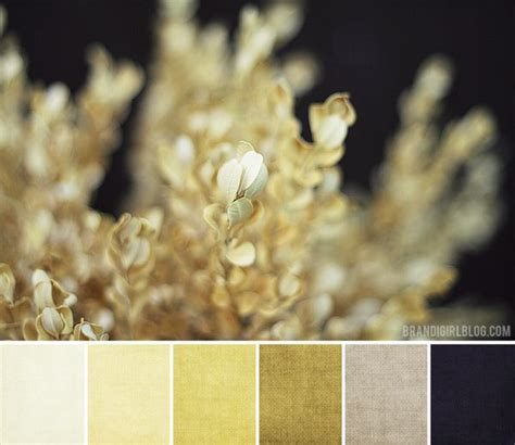 gold and gray color scheme 1000 images about combos on paint colors