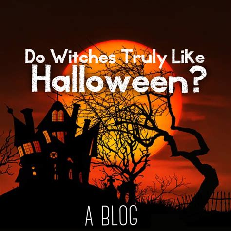 like a witch s brew books do witches truly like insights from the witch