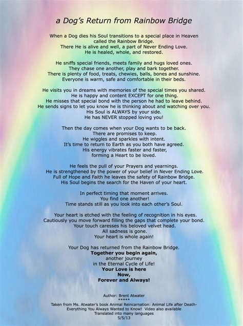 poems about dogs dying rainbow bridge rainbow bridge poem re a s purpose and journey in animals