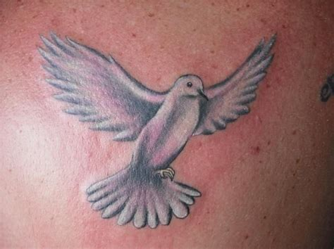 white dove tattoo best 25 dove tattoos ideas on