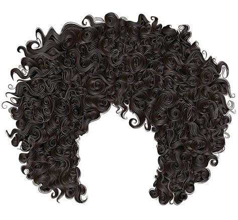 curly hair vector tutorial royalty free curly hair clip art vector images