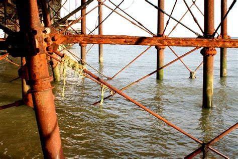 pier fishing net eastbourne piers takeover bids and camera obscura sussex