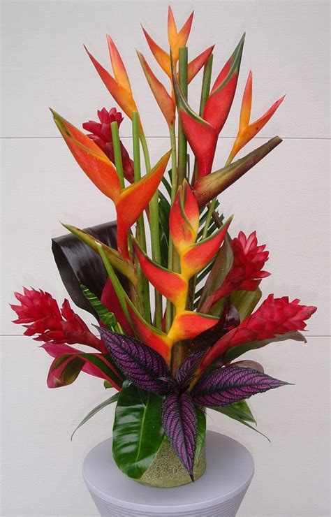 floral arrangement 25 best ideas about tropical flower arrangements on