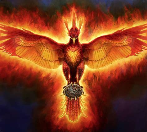 phoenix   clip art  clip art